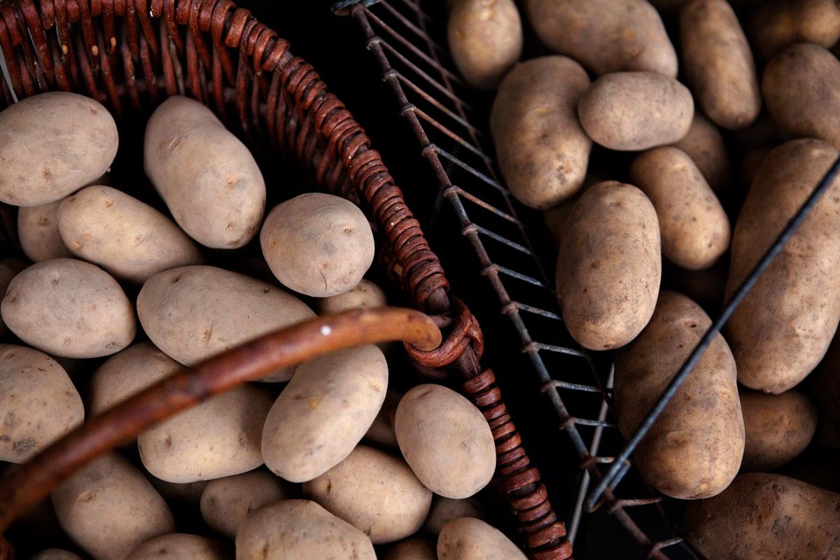 EDEKA Woytke in Hamburg tolle Knolle Kartoffeln